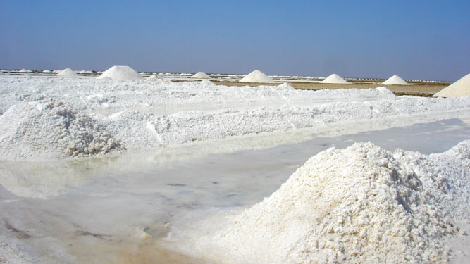 Salt production in Gujarat